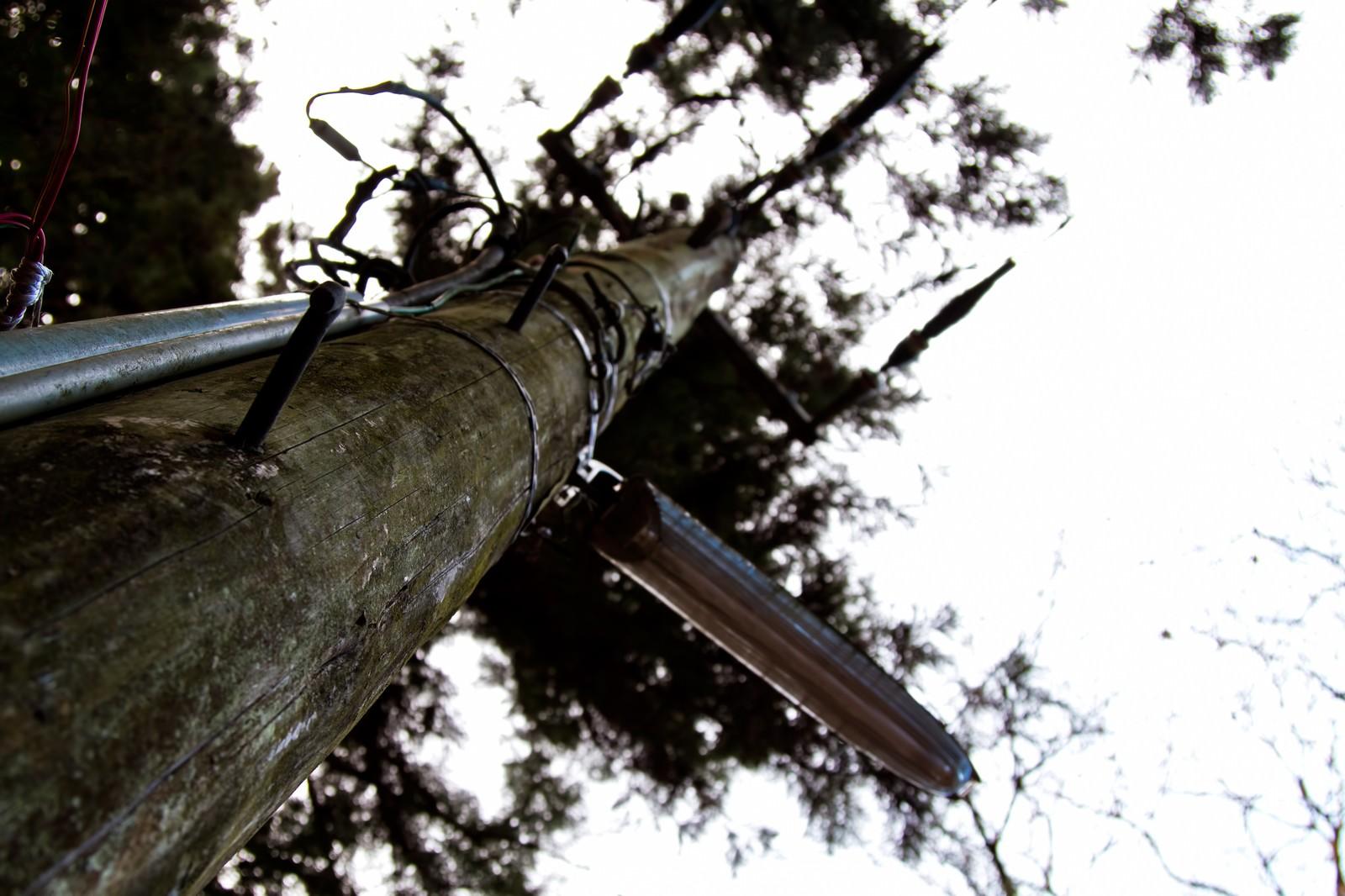 「木製の電柱」の写真
