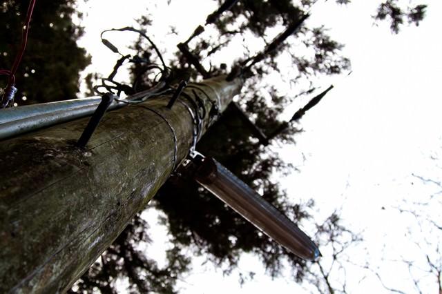 木製の電柱の写真