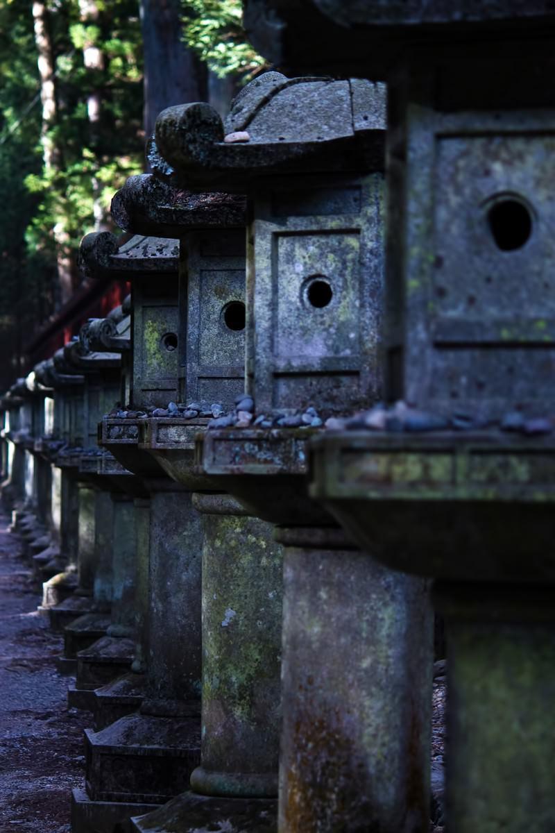 「東照宮の並ぶ石灯」の写真