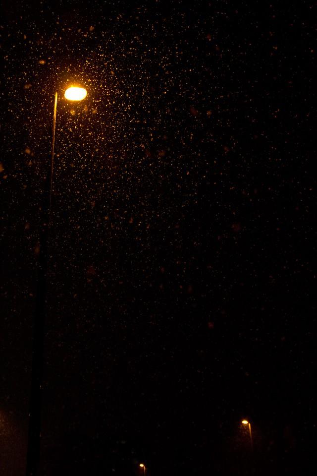 夜に降る雪と街灯の写真
