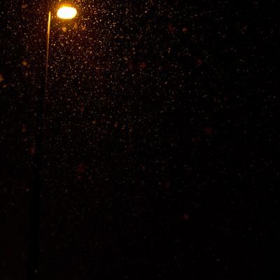 「夜に降る雪と街灯」の写真素材