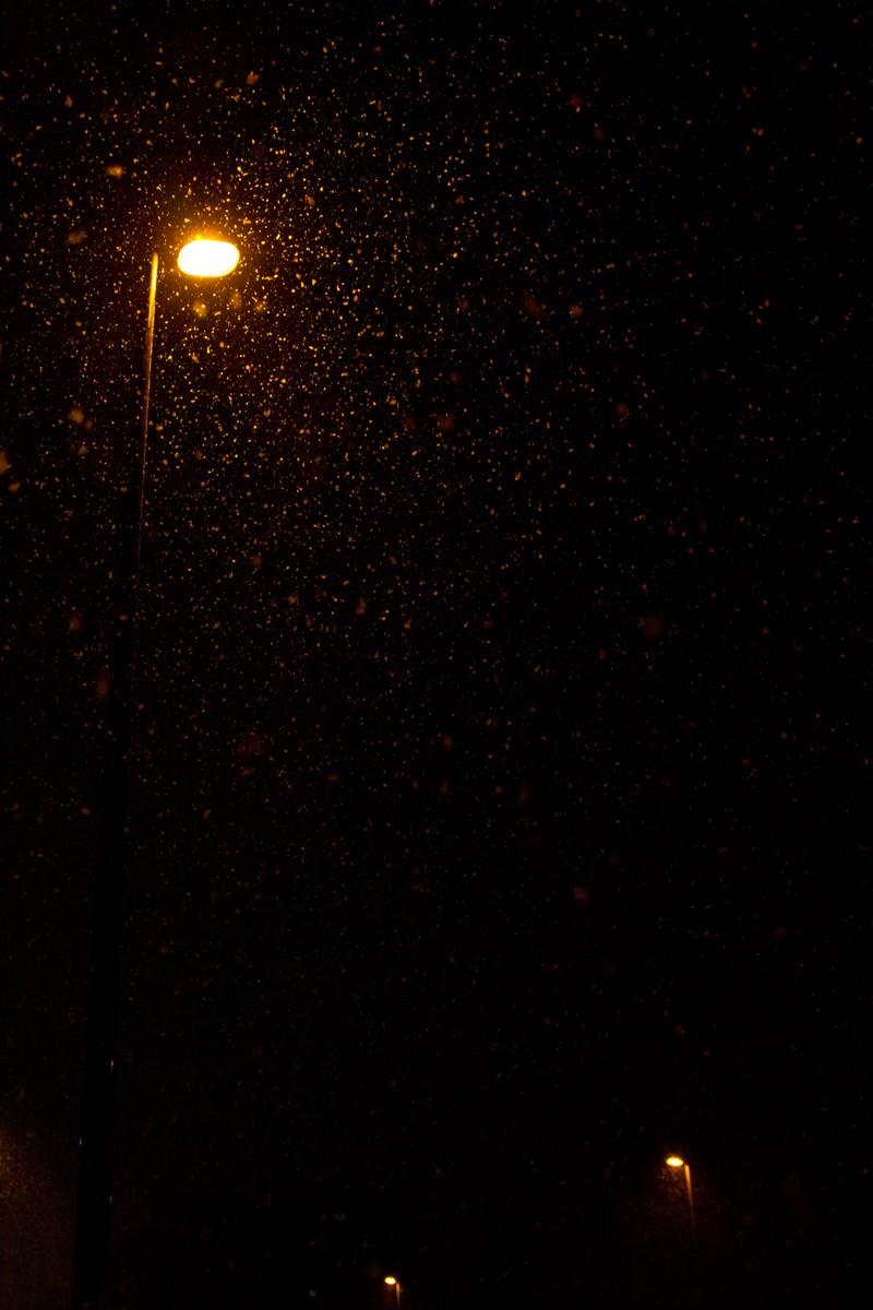「夜に降る雪と街灯」の写真