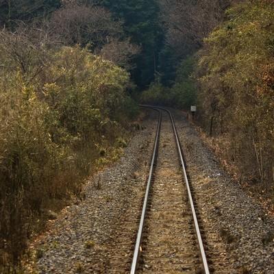 山道を通る線路の写真