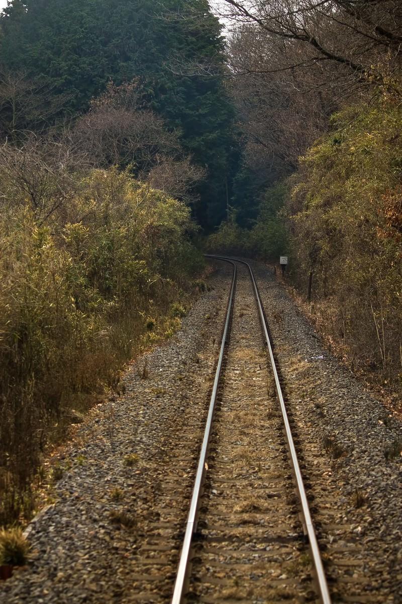 「山道を通る線路」の写真