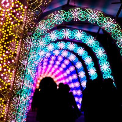 「ライトアップされた道」の写真素材