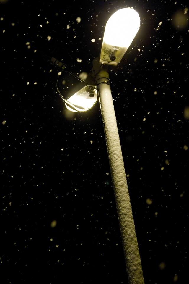降り散る夜の雪の写真