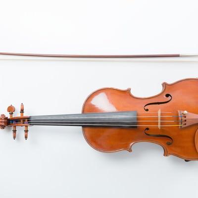 「ヴァイオリンと弓」の写真素材