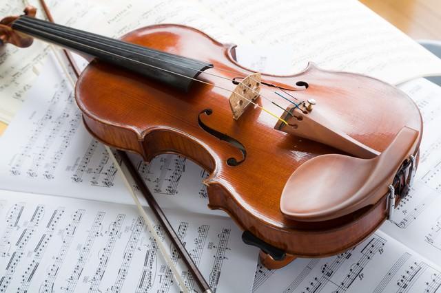 柔らかな日差しとヴァイオリンの写真