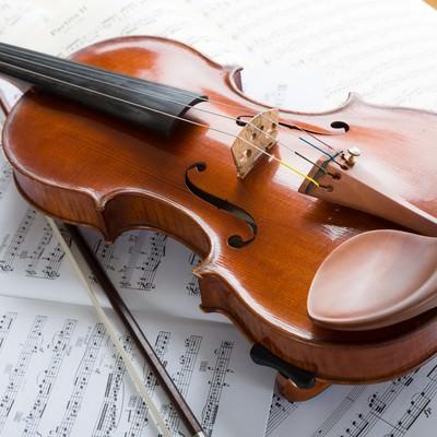 「柔らかな日差しとヴァイオリン」の写真素材
