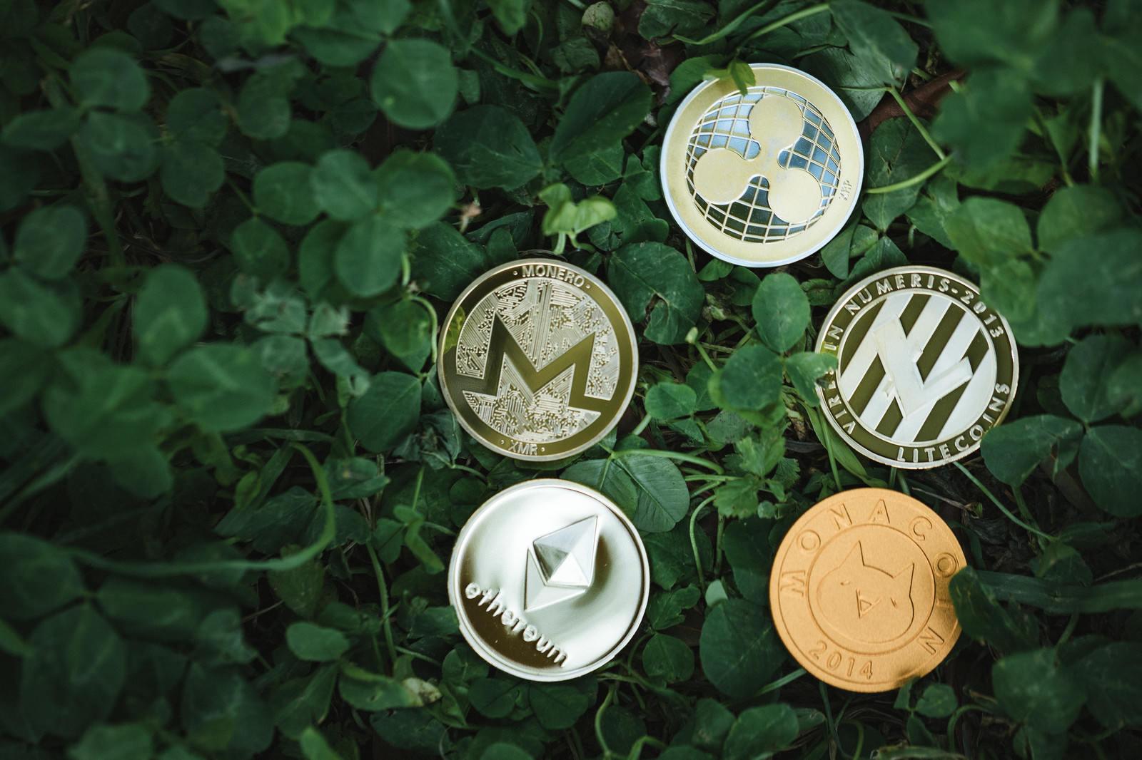 「草むらの中のコイン(アルトコイン)」の写真