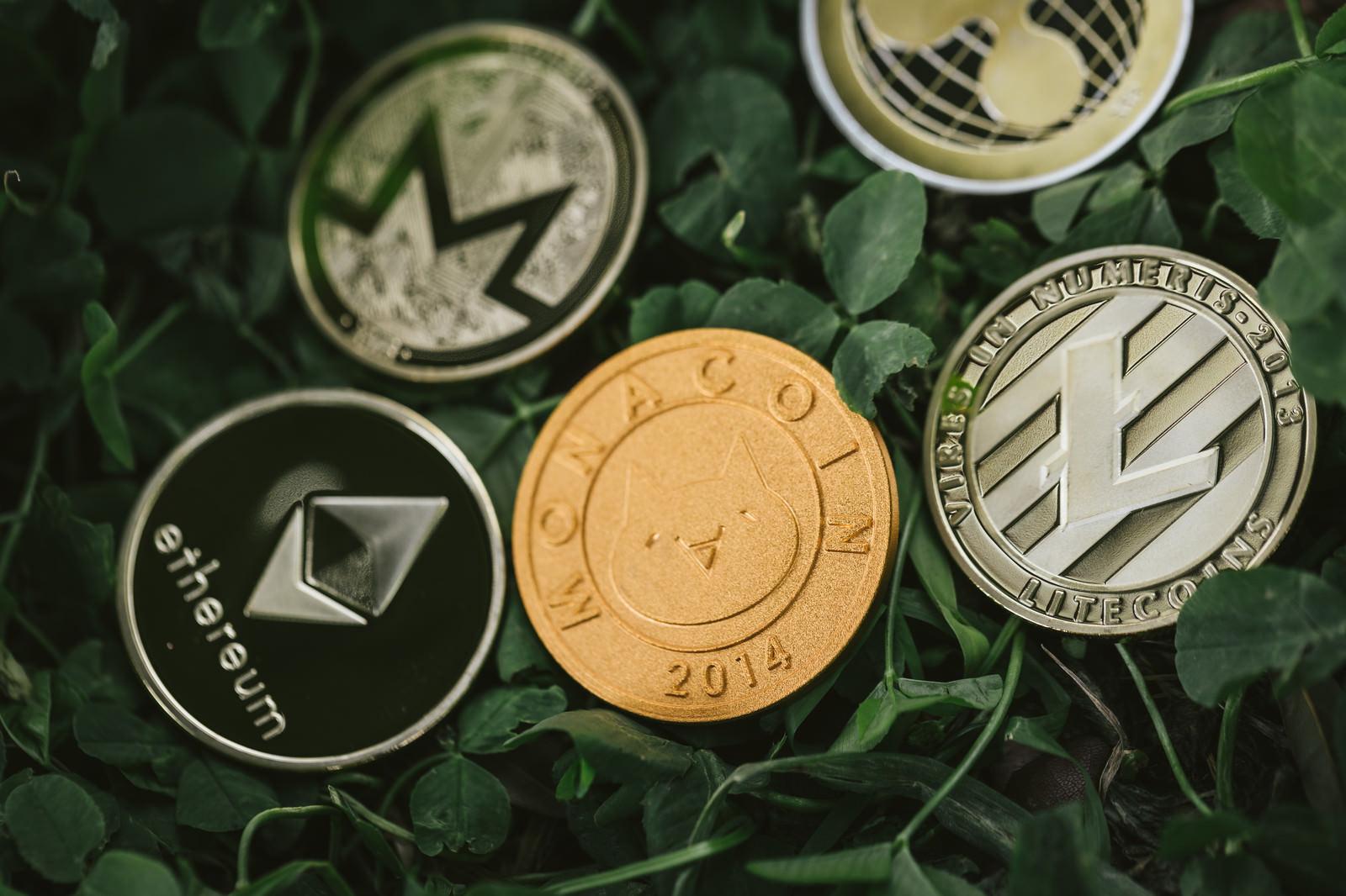「草コイン投資」の写真