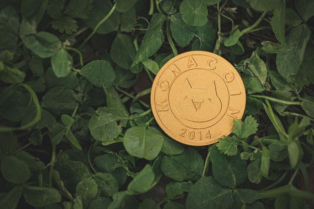 草むらとモナコインの写真
