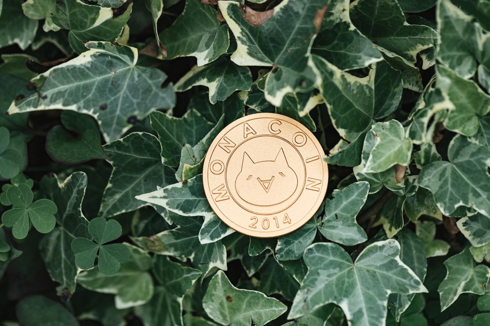 「モナコイン草」の写真