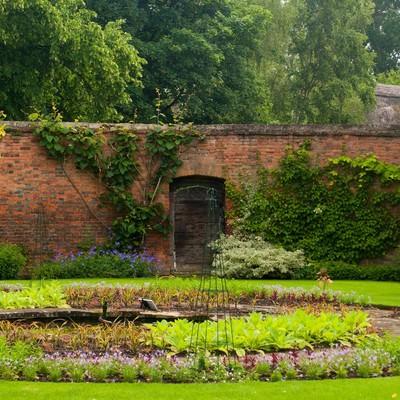 クライストチャーチの緑の庭の写真