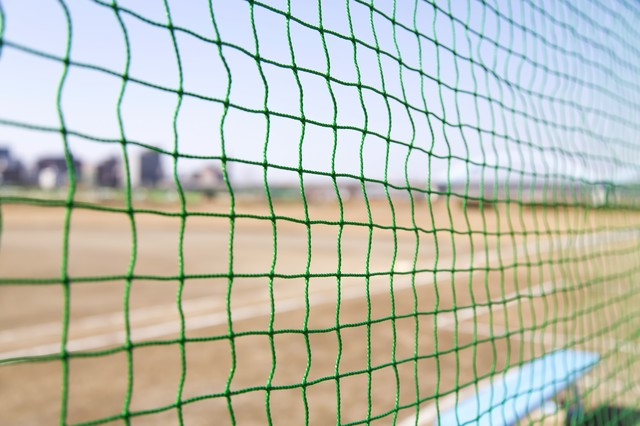 草野球のネット裏の写真