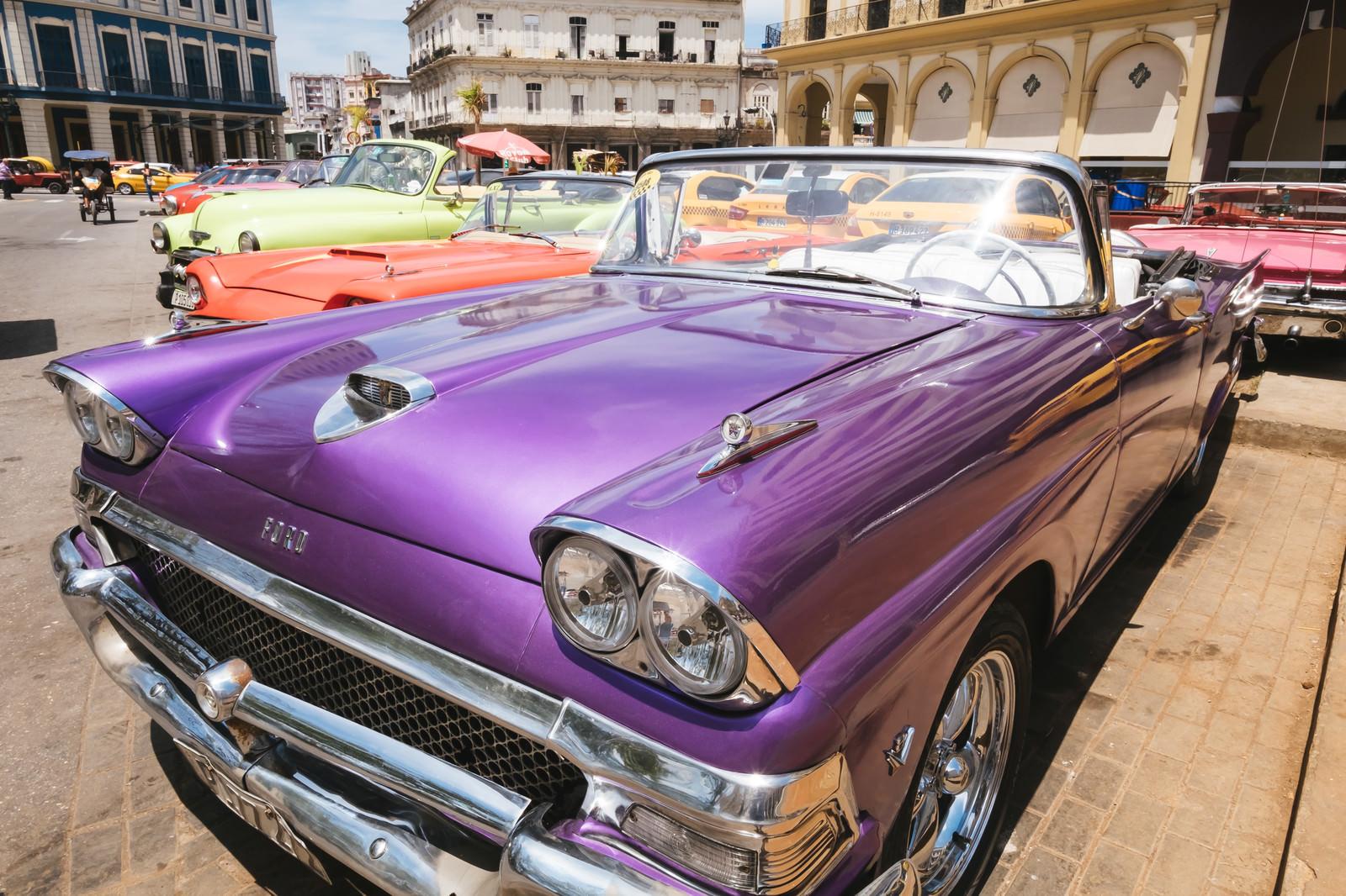 「紫色のイカした車」の写真