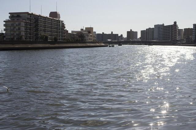 河川と街並みの写真