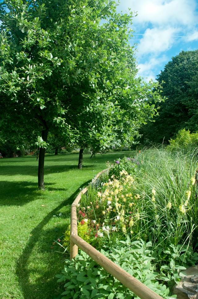 ロンドン ハイドパークの写真