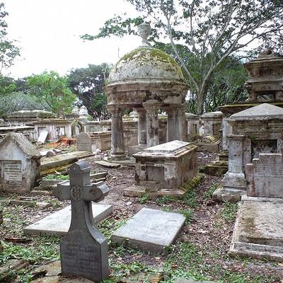 「ジョージタウンの荒れた墓地」の写真素材