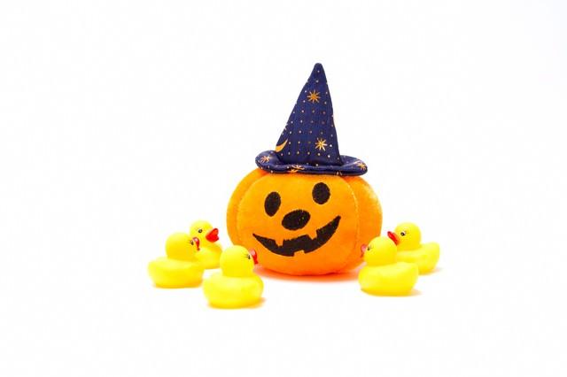 ハロウィンのかぼちゃを召喚するあひるちゃんの写真