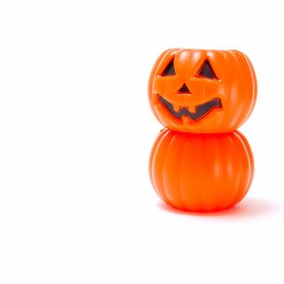 だるまのようなかぼちゃの写真