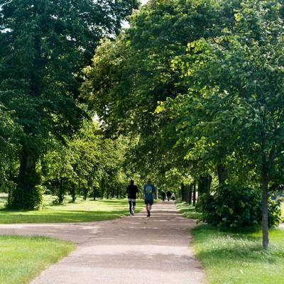 緑の中のハイドパークの写真