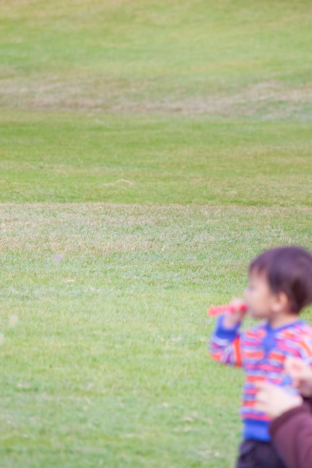 シャボン玉を吹く子供の写真