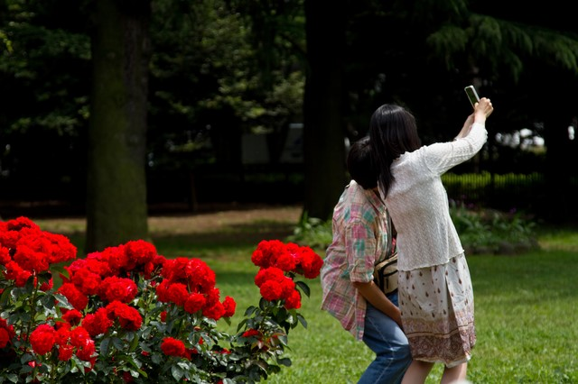 赤い薔薇の前で寄り添い撮影する恋人の写真
