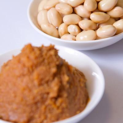 「大豆とお味噌」の写真素材