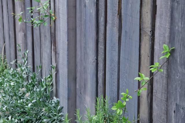 木の壁と緑の写真