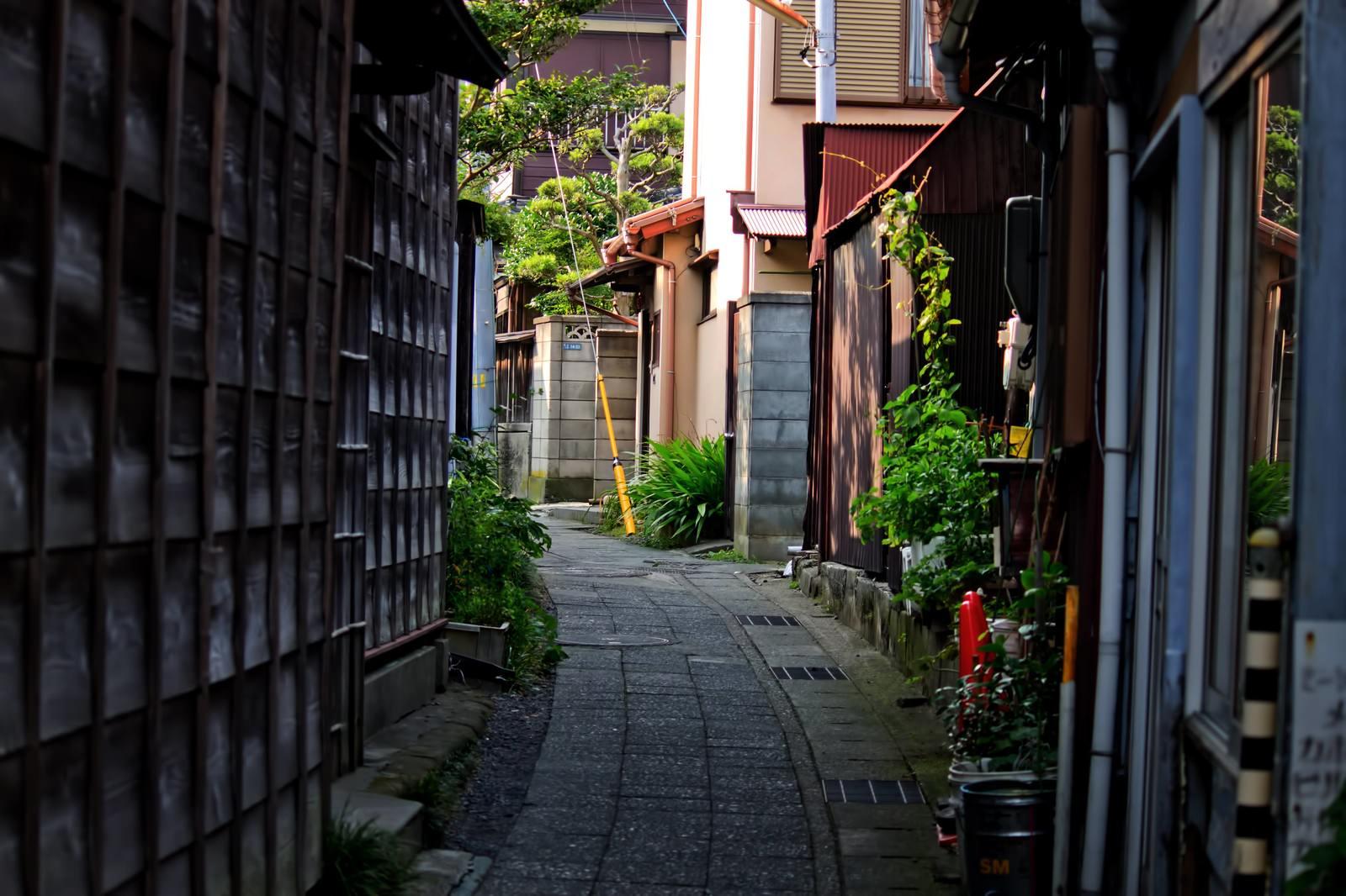 「路地裏の道」の写真