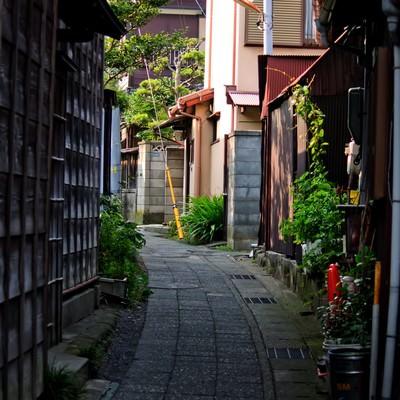 「路地裏の道」の写真素材