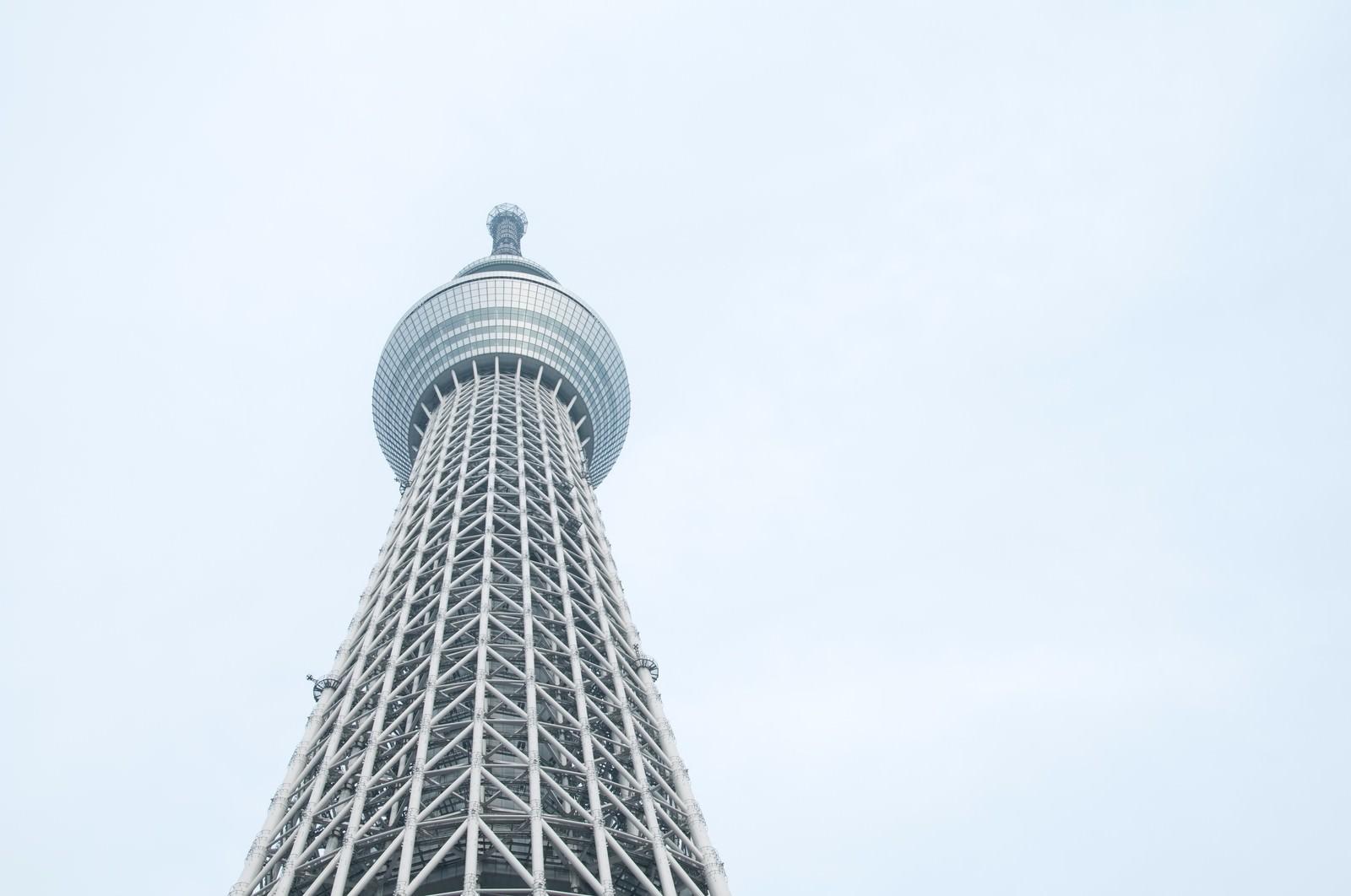 「東京スカイツリーを見上げる」の写真