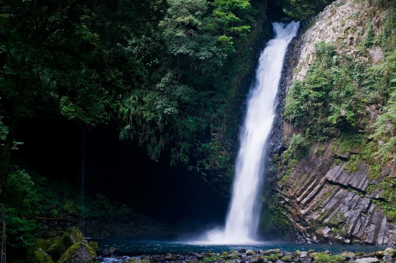 「浄蓮の滝と自然」の写真