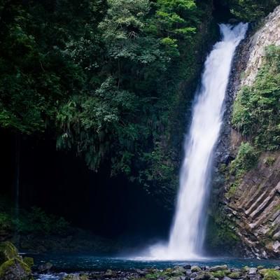 浄蓮の滝と自然の写真