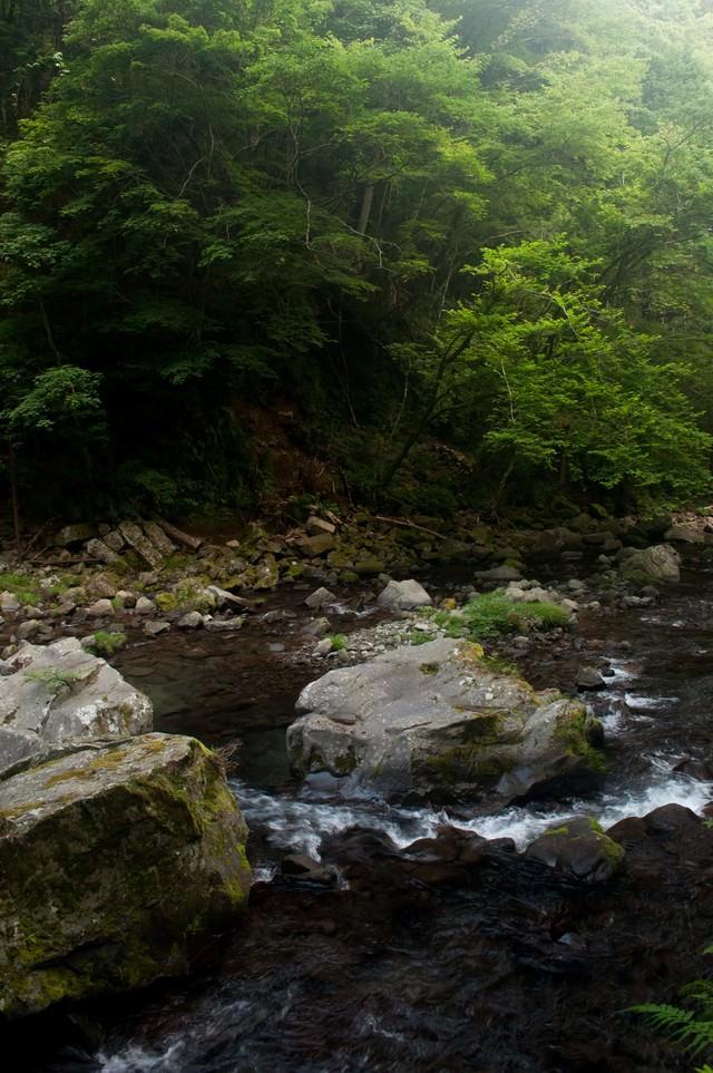 上流の川の写真