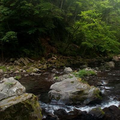 「上流の川」の写真素材