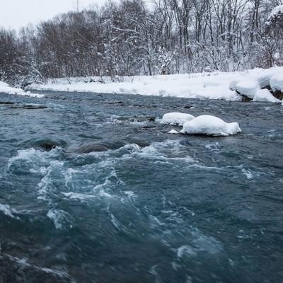 「雪の中の美瑛川」の写真素材