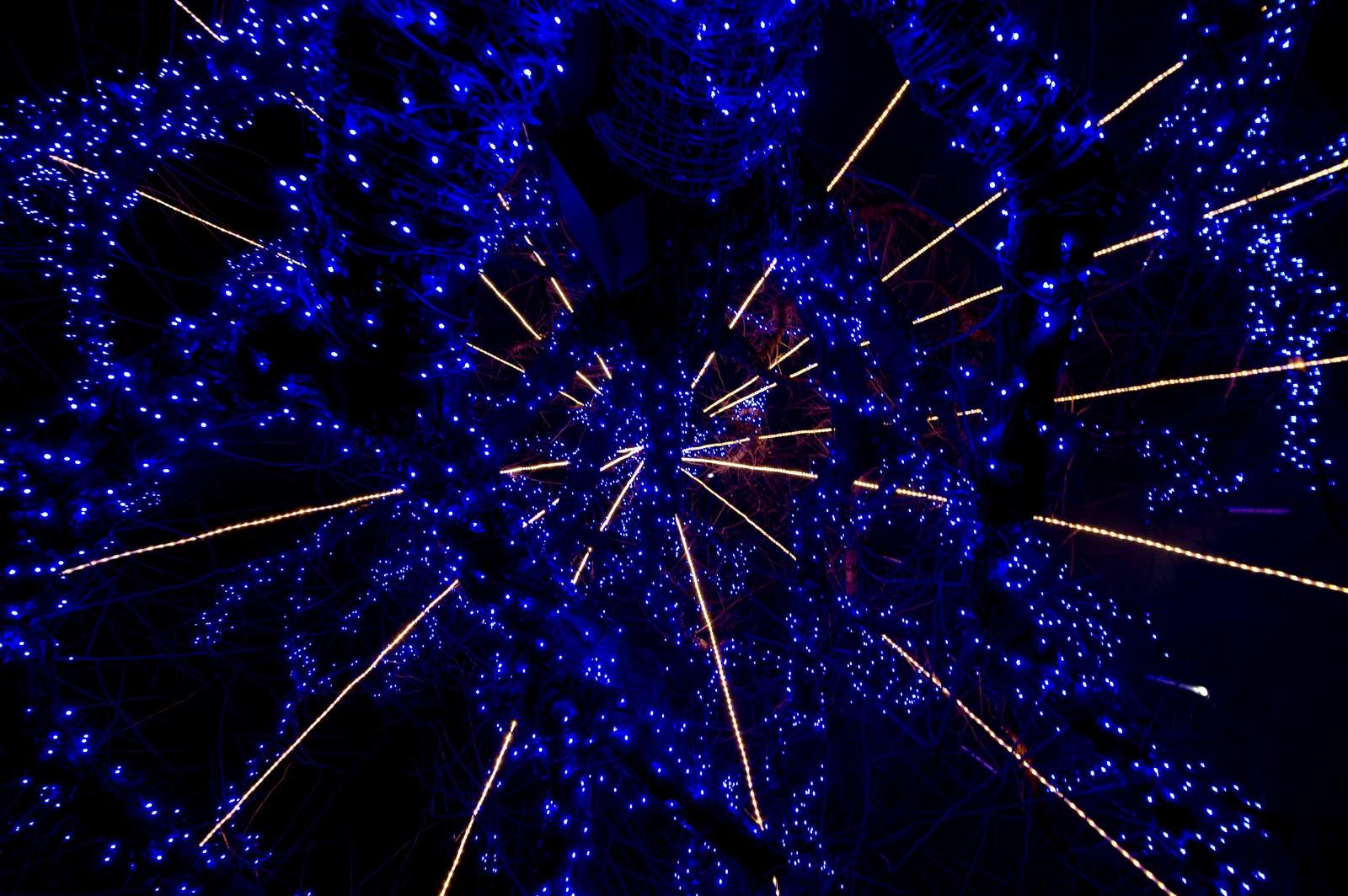 「青く光るイルミネーション」の写真