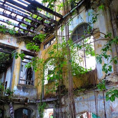「ジョージタウンの廃墟」の写真素材