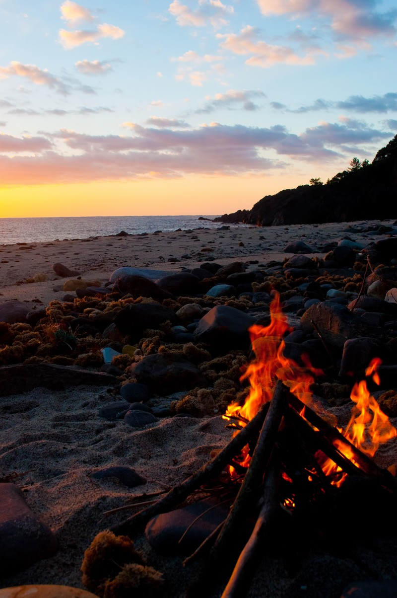 「屋久島の浜辺で焚き火」の写真