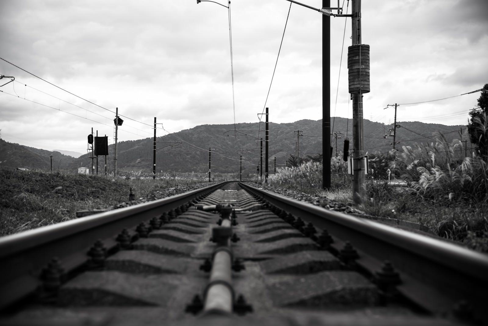 「灰色の線路」の写真