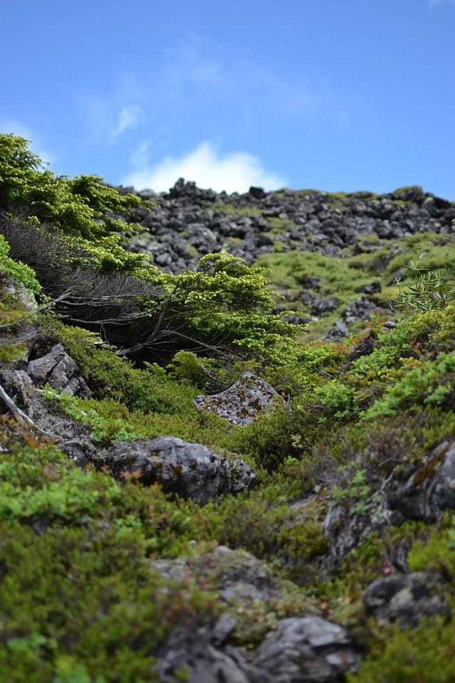 ゴツゴツした岩場と空の写真