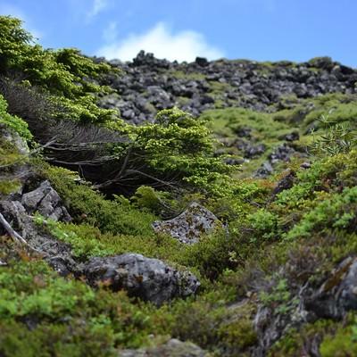 「ゴツゴツした岩場と空」の写真素材