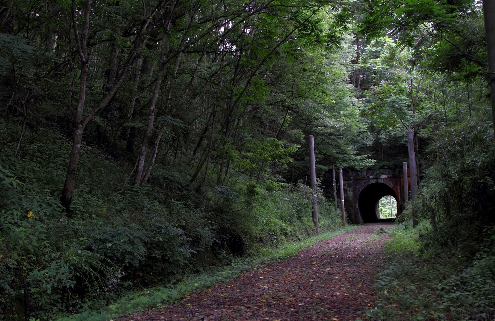 「不気味な廃線のトンネル」の写真