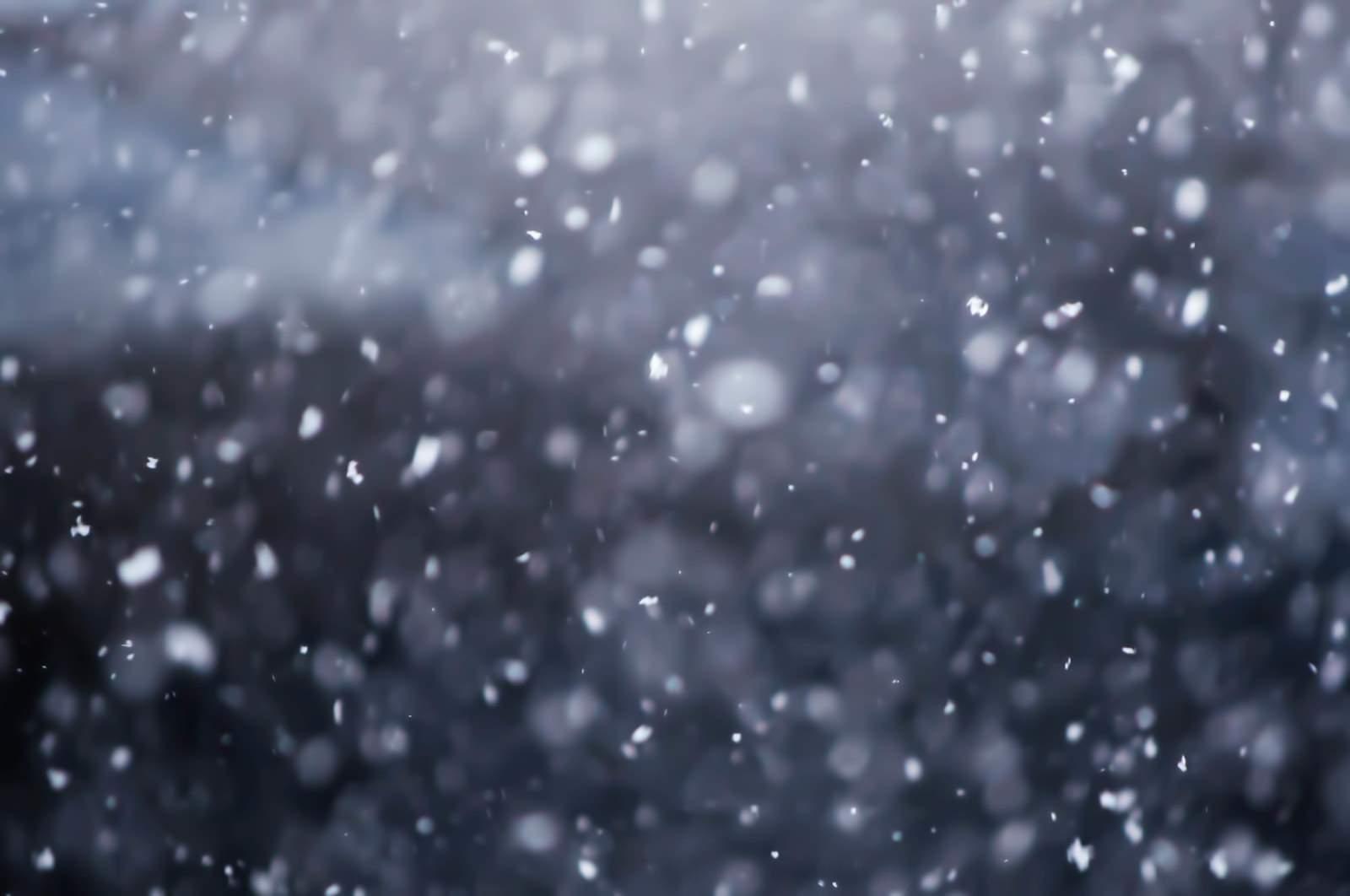 「雪が舞う」の写真