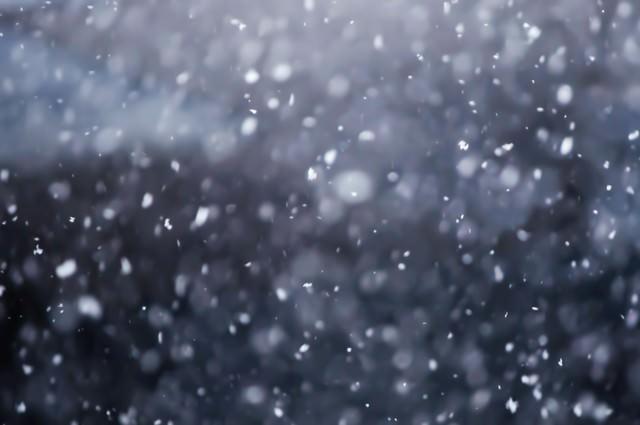 雪が舞うの写真