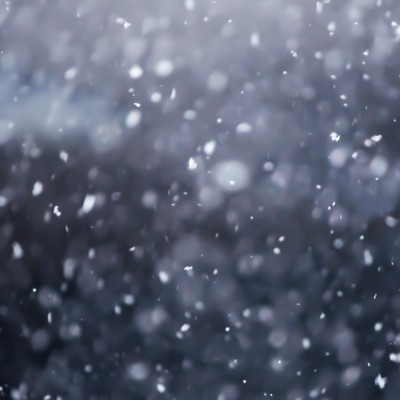 「雪が舞う」の写真素材