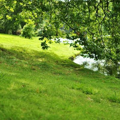 ストアヘッドの湖のほとりの写真