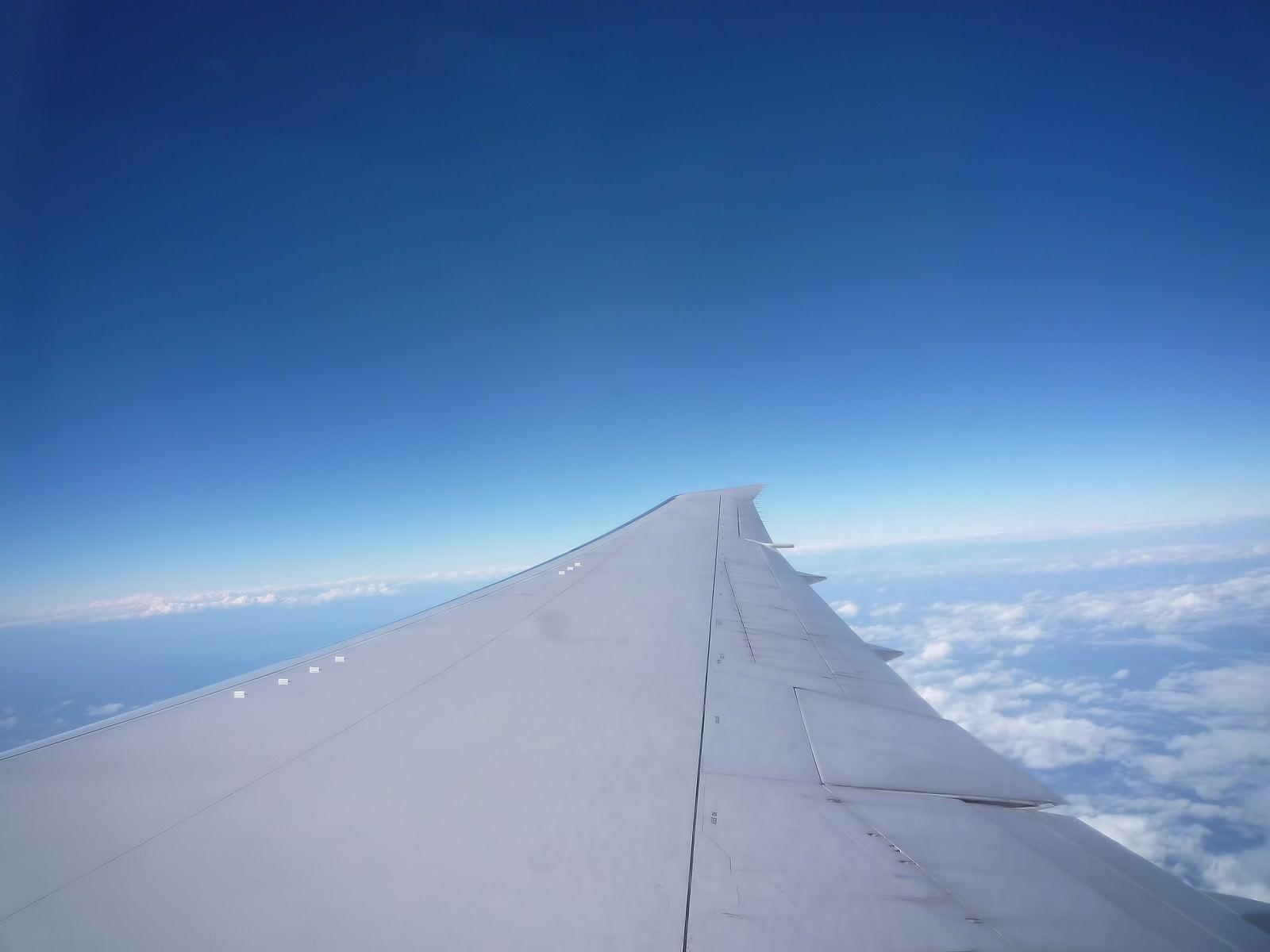 「飛行機の羽と広がる青空飛行機の羽と広がる青空」のフリー写真素材を拡大